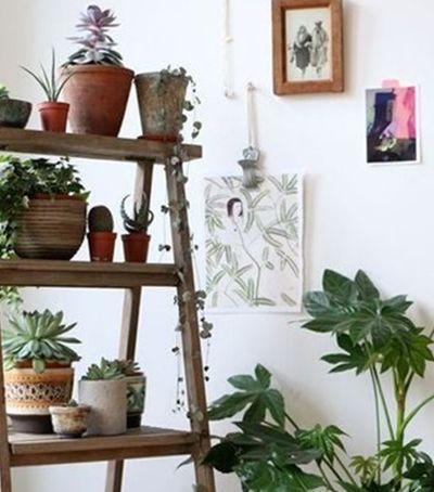 10 Jardins verticais que cabem em qualquer espaço