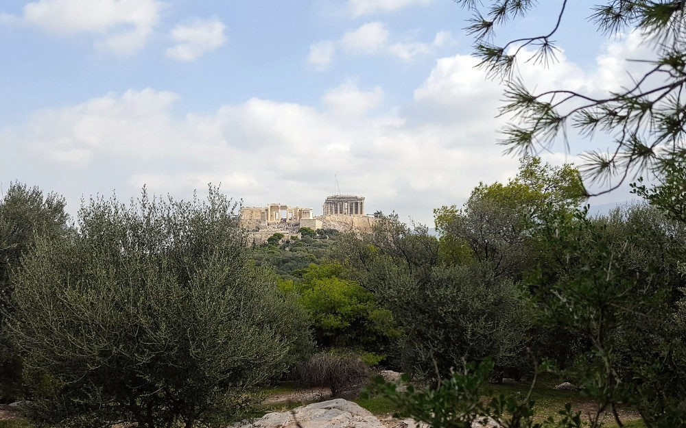 Another long-distance view of the Acropolis from our walking tour.