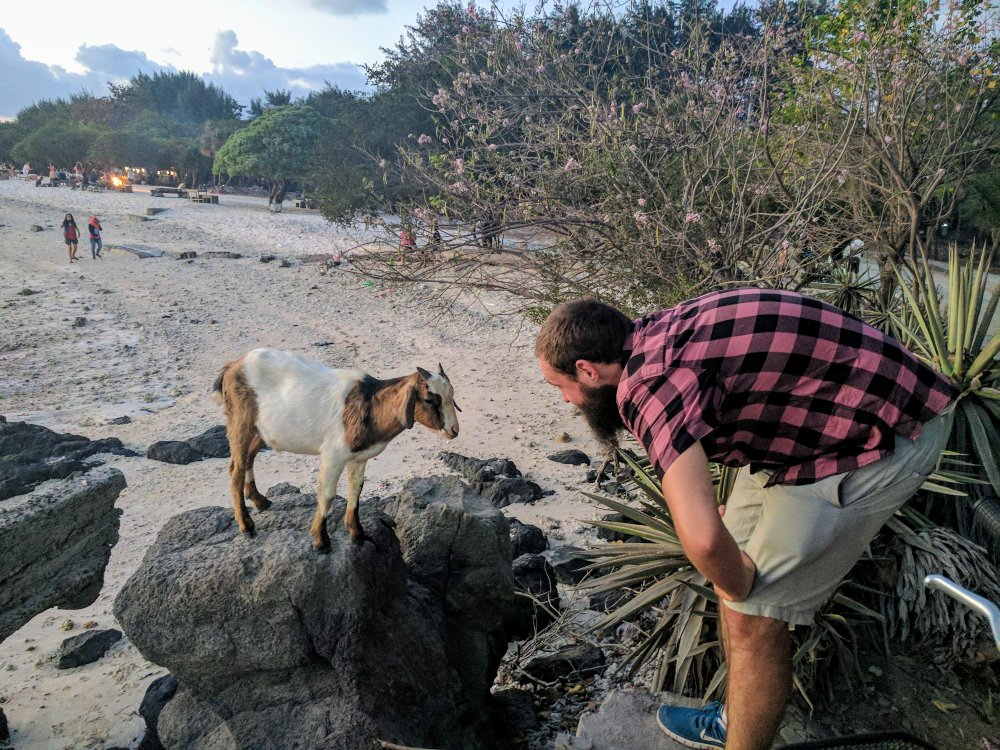 Dan with a friendly goat.