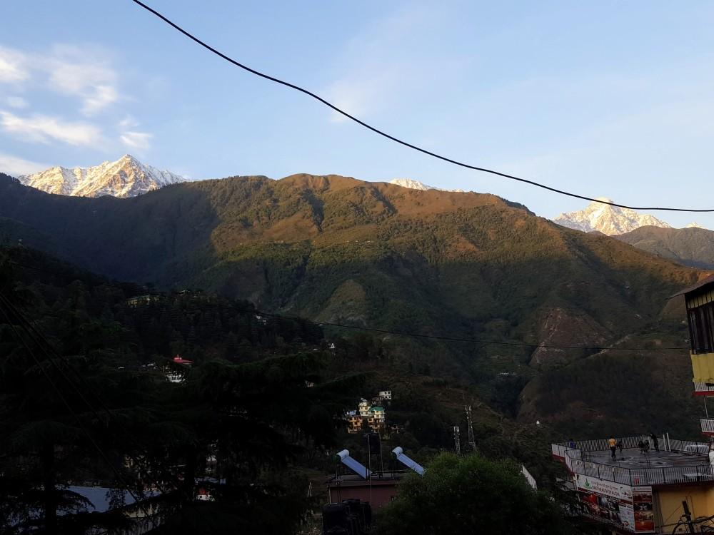 Looking up at the towering Himalayan mountain range near Mcleod Ganj.