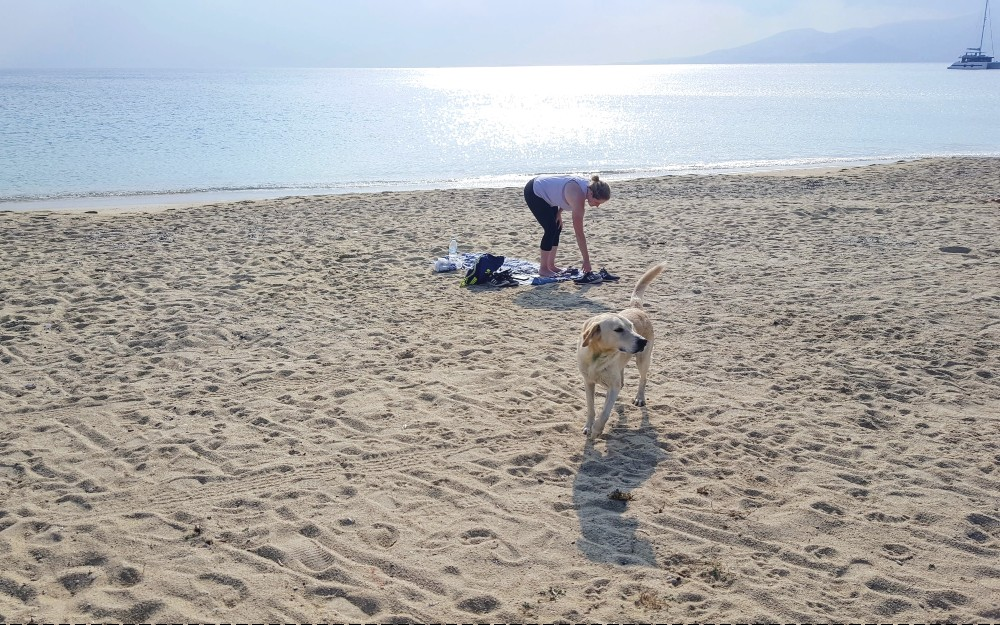 Relaxing at a beach on Naxos with a local dog friend.