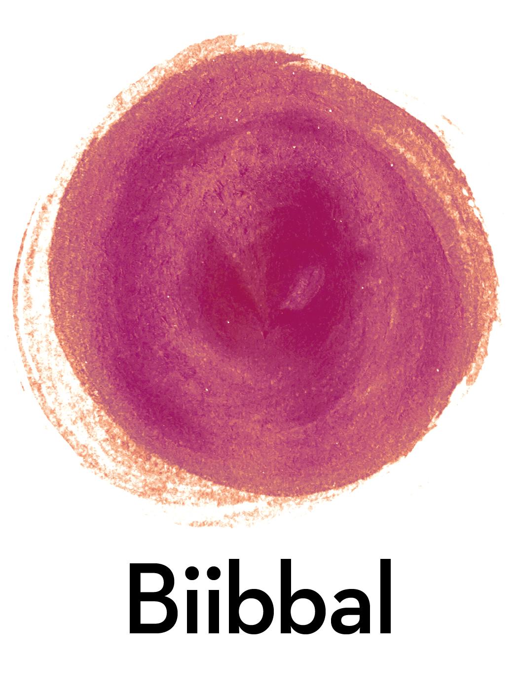 Davvisámegiel Biibbal 2019