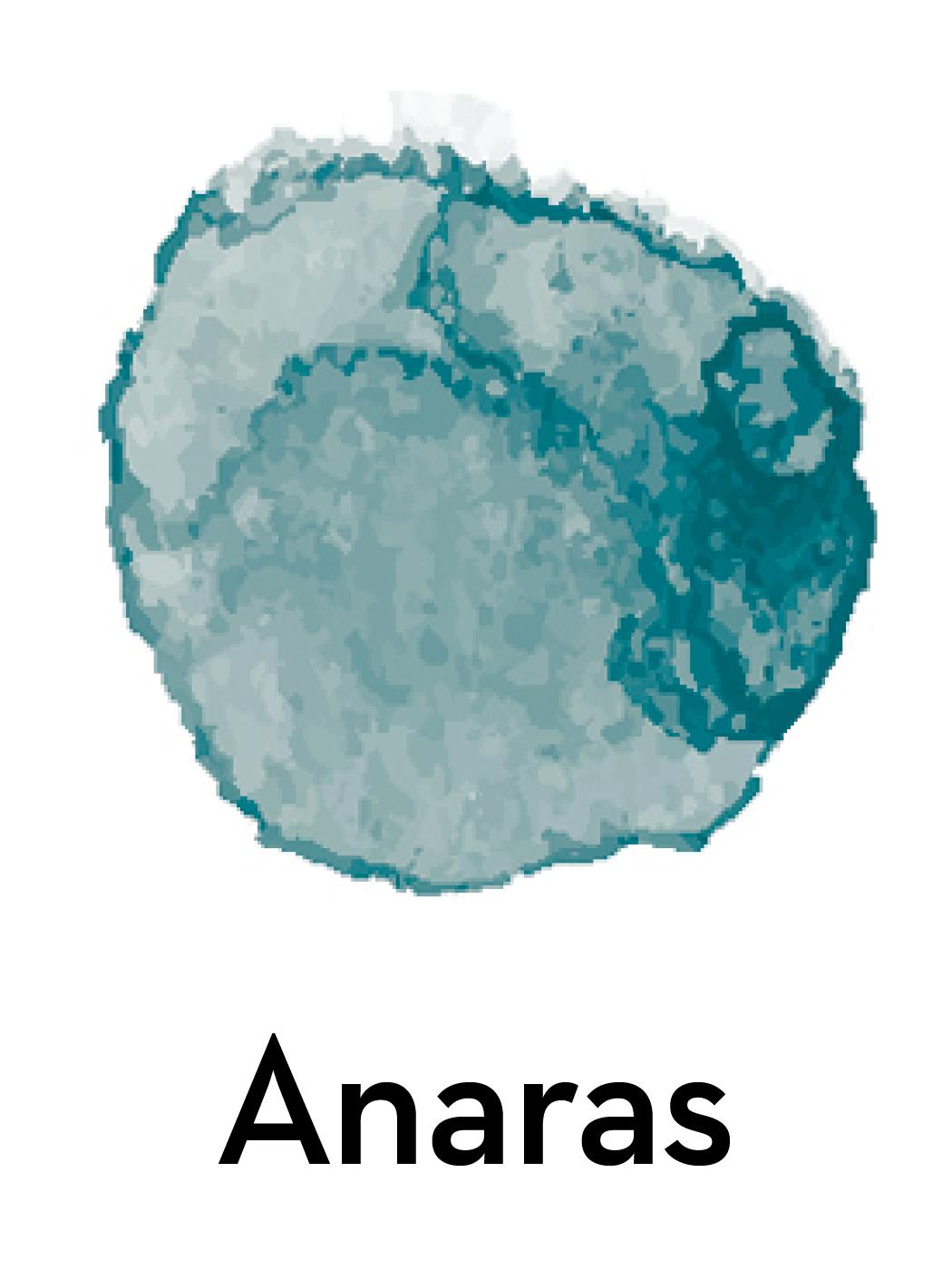 Anaras Raammat