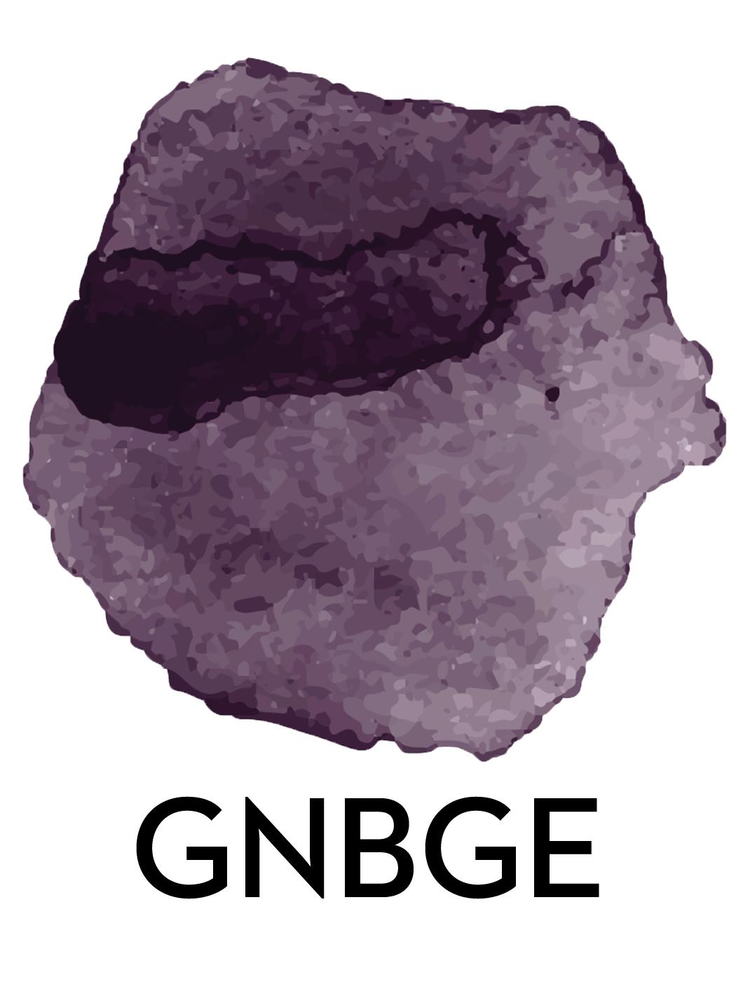 GNB Abfolge