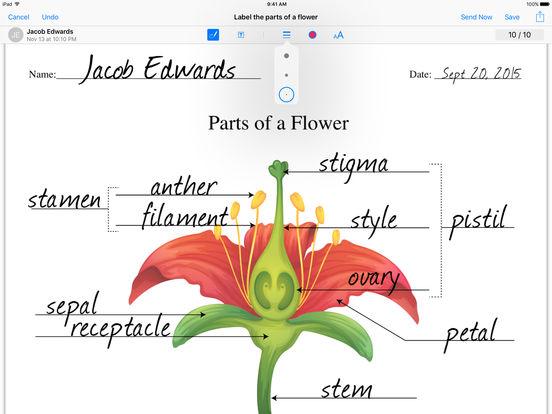 iTunes U basic PDF annotation tools