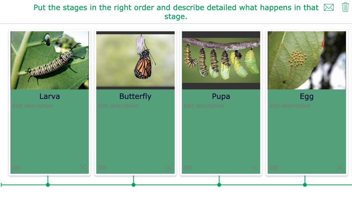 Student exercise: Timeline life cycle butterfly