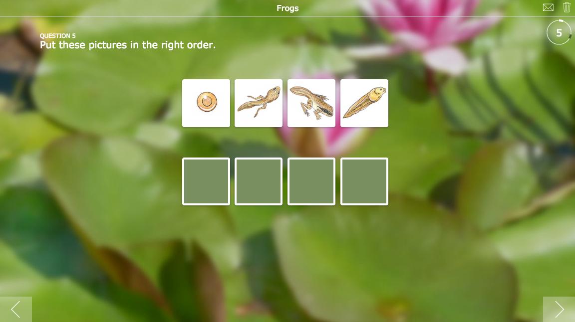Quiz widget