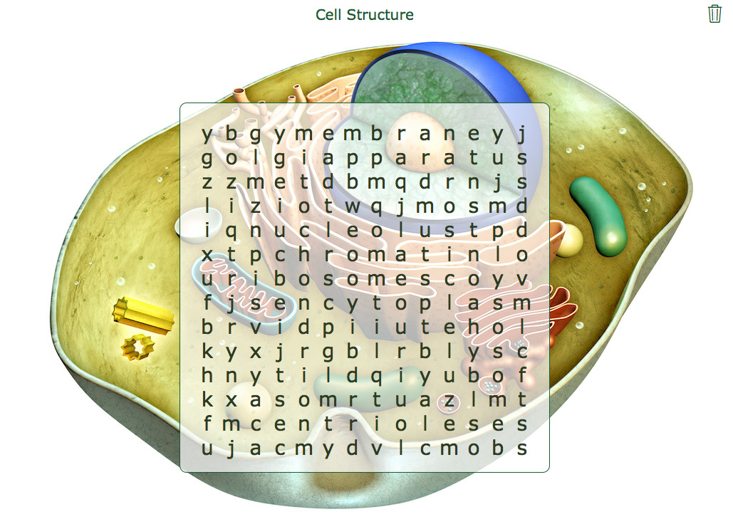 Cell Structure Word Search