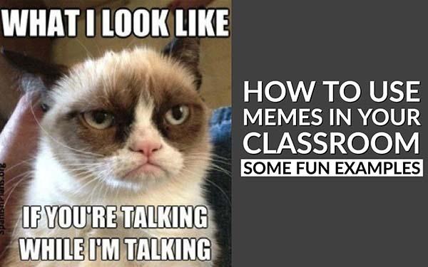 who makes memes