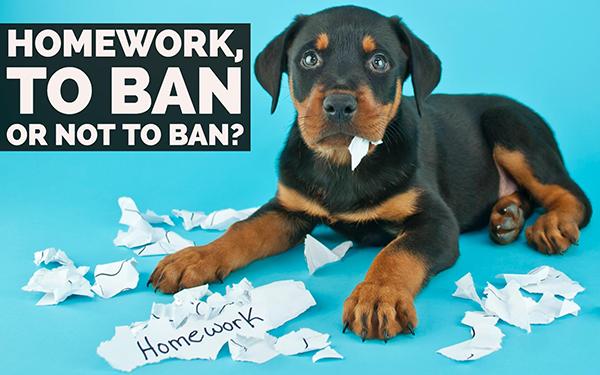 Is homework harmful or helpful to students