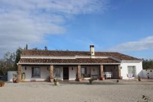 722154 - Finca For sale in Sotogrande, San Roque, Cádiz, Spain