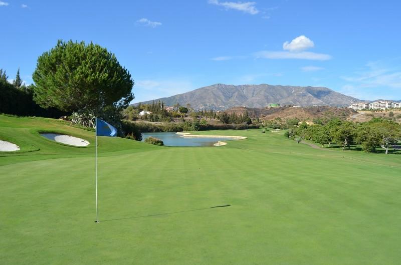 golf-1649263_1280