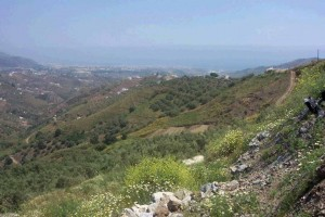 43643 - Plot for sale in Torrox Road, Frigiliana, Málaga, Spain