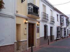317126 - Bar and Restaurant for sale in Nerja, Málaga, Spain