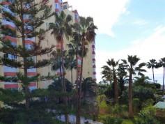 780368 - Studio Apartment for sale in Torrox Costa, Torrox, Málaga, Spain