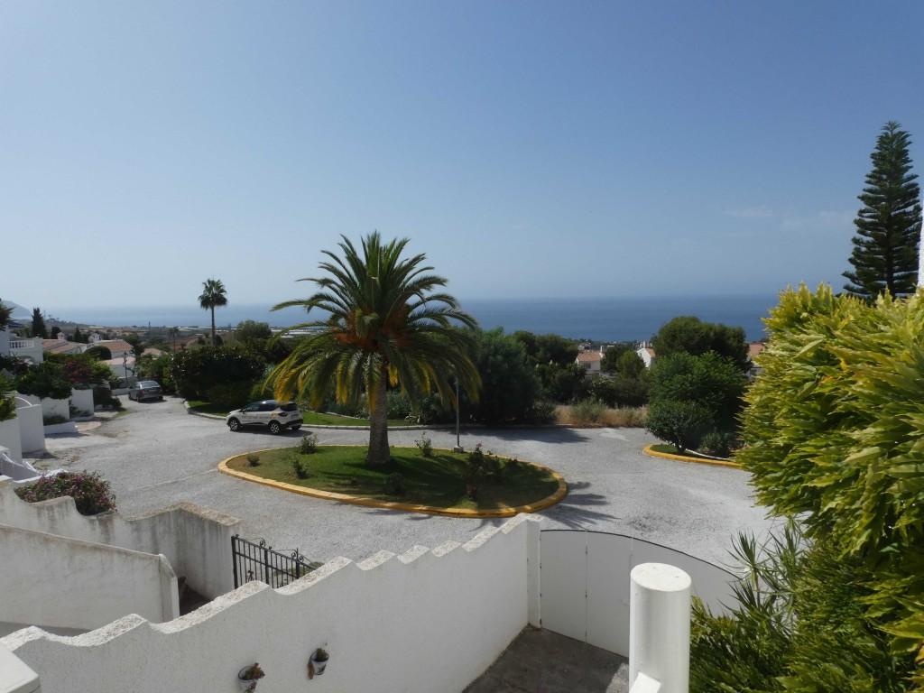 Bottom terrace view