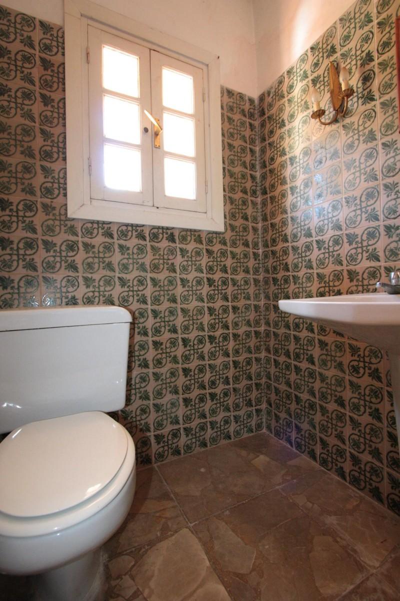 Guest toilet detail