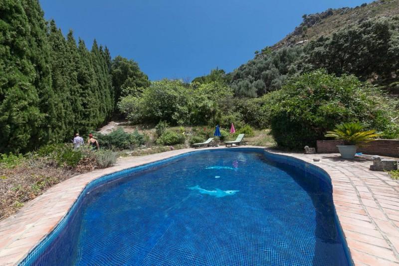 Pool detail Finca Casares-7