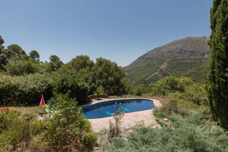Pool distance view Finca Casares-6