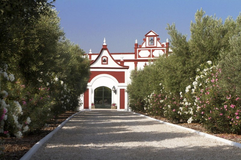 Brochure photographs-20