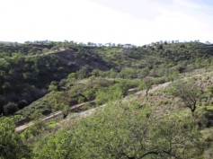 145670 - Land for sale in Monda, Málaga, Spain
