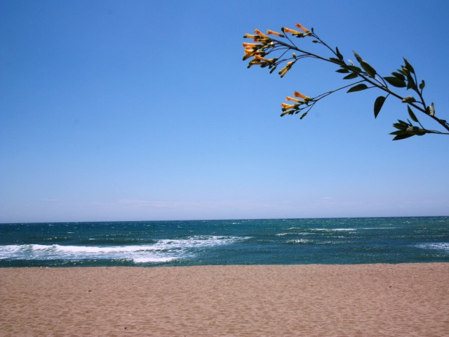 CabopinoNaturalBeach