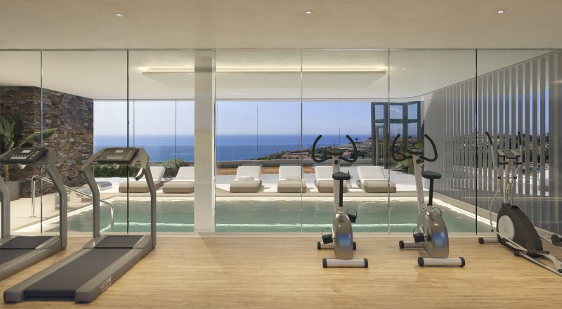 WELLNESS The View F