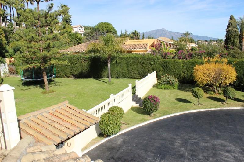 Terrace view of garden