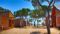 783855 - Campsite for sale in Tarifa, Cádiz, Spain