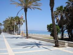 768013 - Land for sale in San Pedro Playa, Marbella, Málaga, Spain