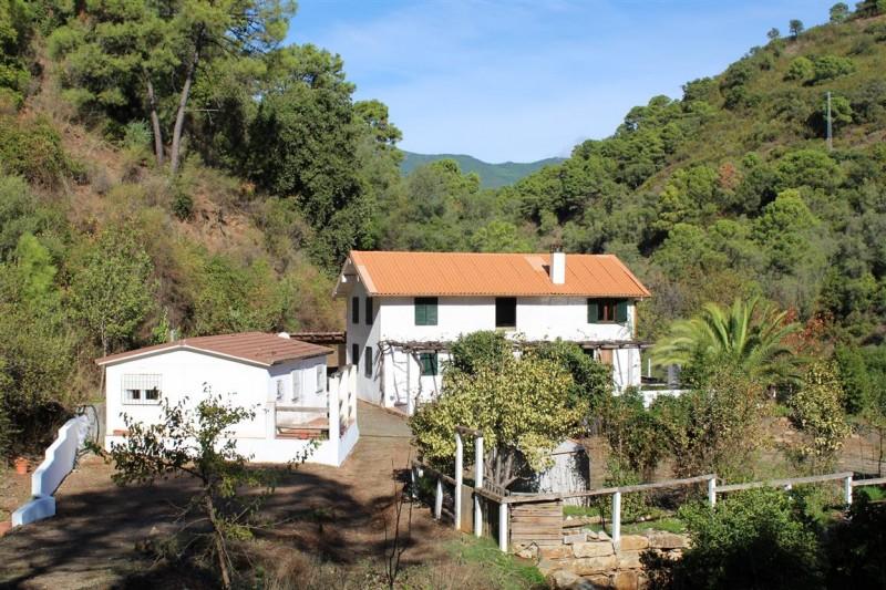 Finca Rio Castor (12)
