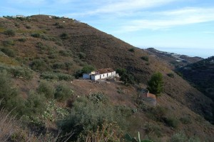 315805 - Finca to be restored for sale in Torrox, Málaga, Spain
