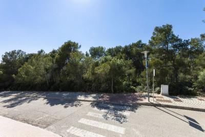 749775 - Plot For sale in Cala Vinyes, Calvià, Mallorca, Baleares, Spain