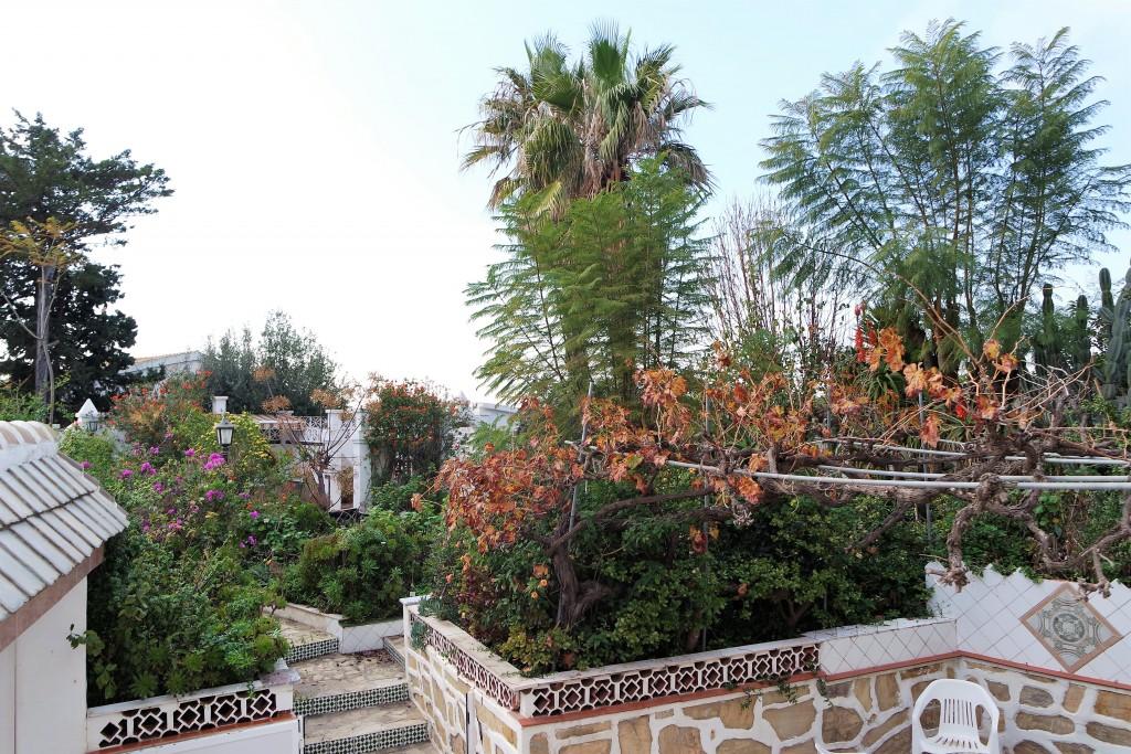 1711-garden-view1