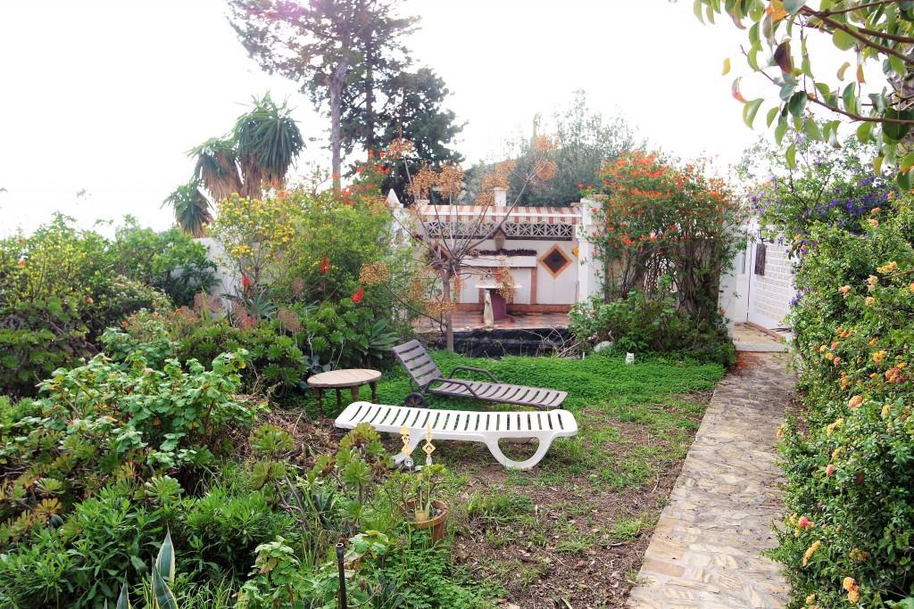 1711-garden3
