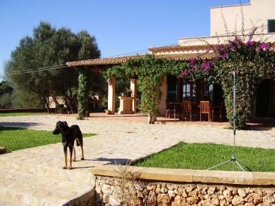 414766 - Finca For sale in Porto Colom, Felanitx, Mallorca, Baleares, Spain