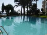 Communal Pool 1