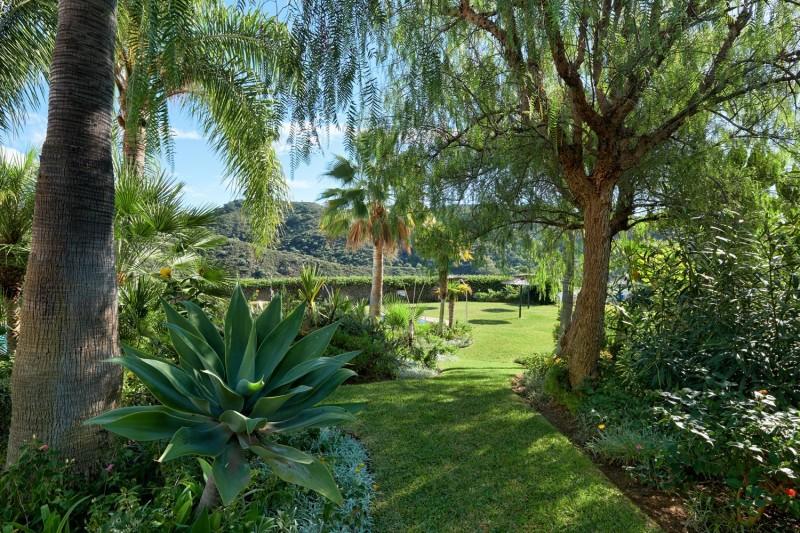 Garden (2) (Large)