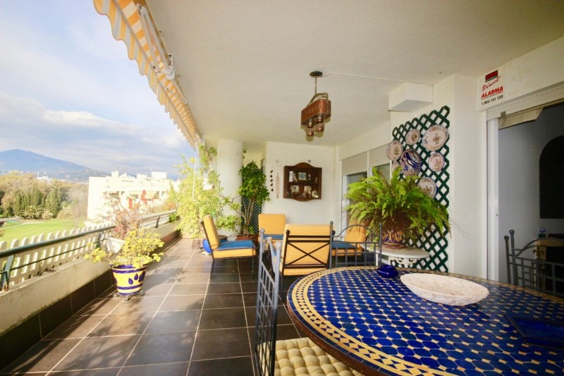 Terrace (1) (Large)