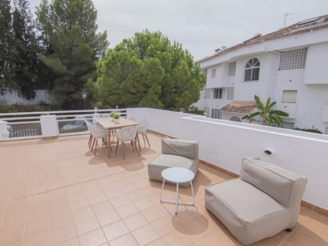 Terrace (5)