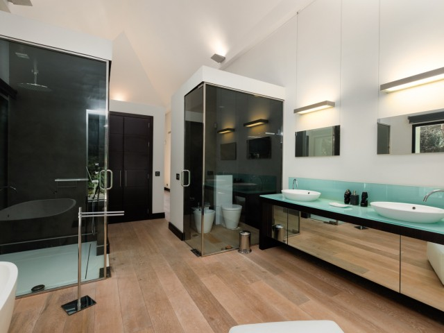 Guest bathroom  (1)