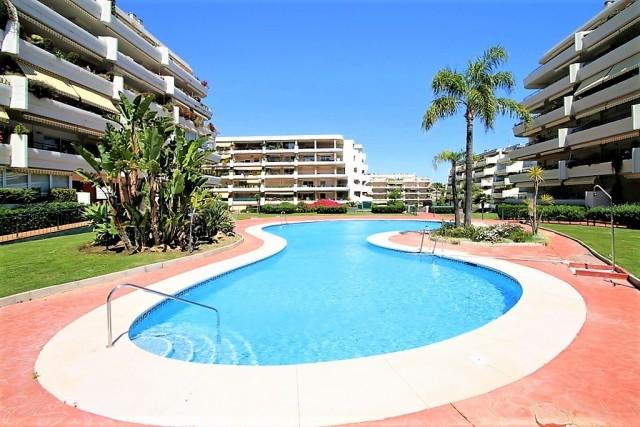 Swimming pool 2 (Large)