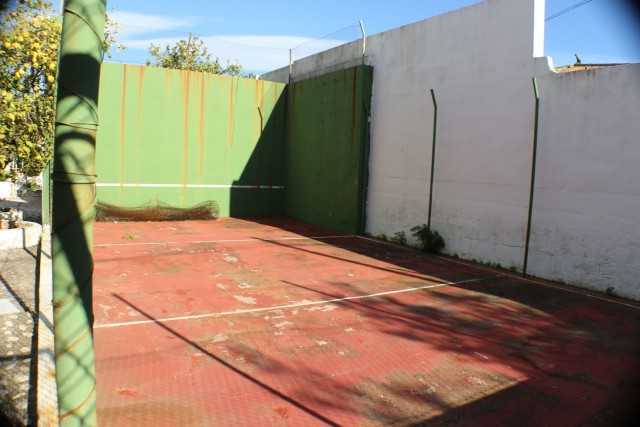 squash / paddle court