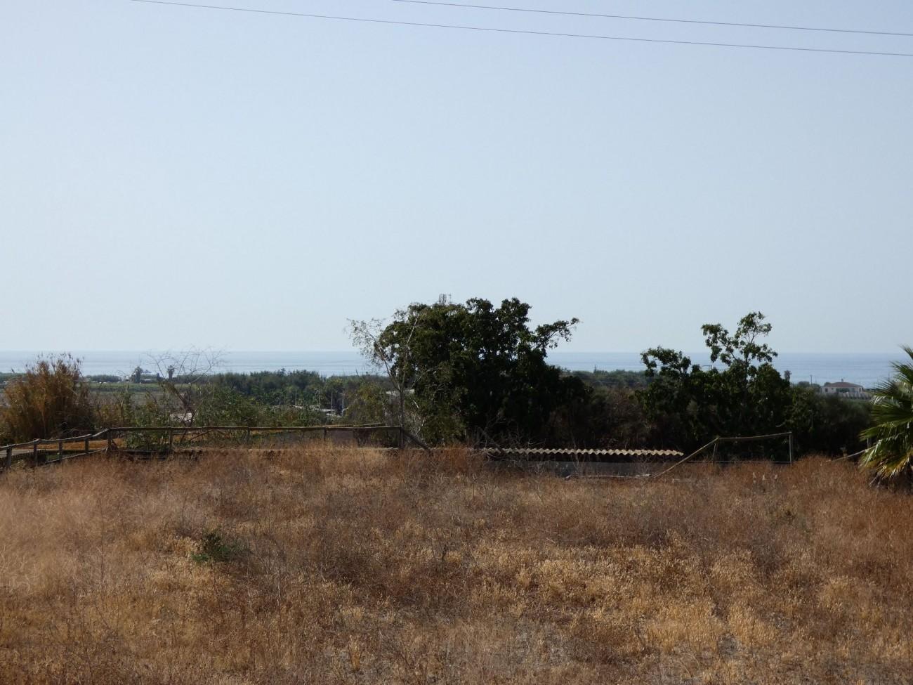 view land paddock