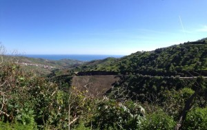 783056 - Building Plot for sale in Moclinejo, Málaga, Spain