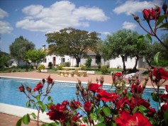 788265 - Country Home for sale in Sevilla, Sevilla, Spain