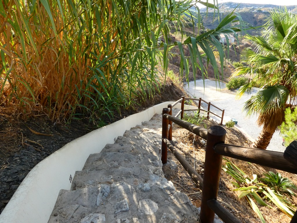 steps from the terrace