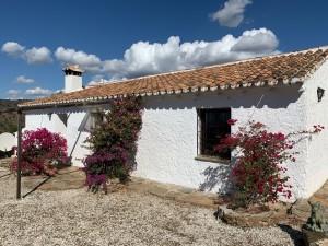793876 - Country Home for sale in Olías, Málaga, Málaga, Spain