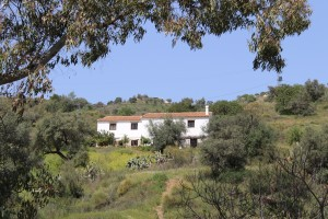 757358 - Country Home for sale in Comares, Málaga, Spain