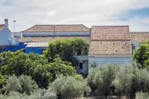 Authentic spacious village house with pool in Comares